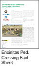 Encinitas Ped crossings