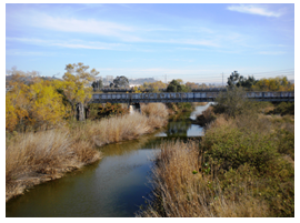 San Diego River Double Track